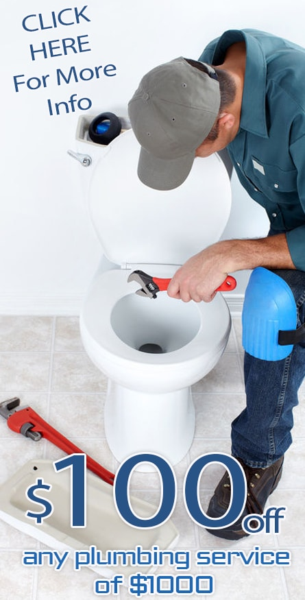toilet repair Offer